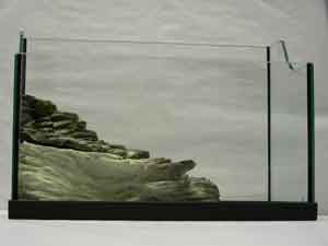 Tartarughiera economica for Tartarughiera acqua
