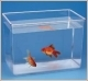 vaschette per pesci